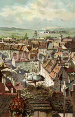 Storchennest mit Störchen auf einem Dach über der Stadt