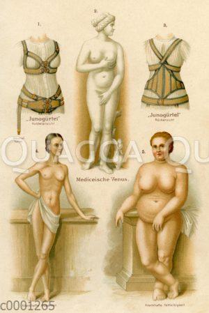 Vorzüge und Fehler des weiblichen Körpers
