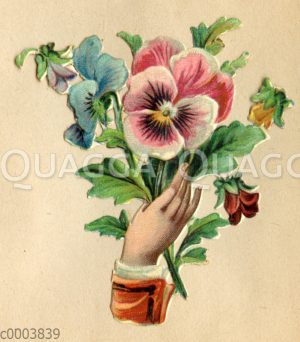 Glanzbild: Hand mit Stiefmütterchen