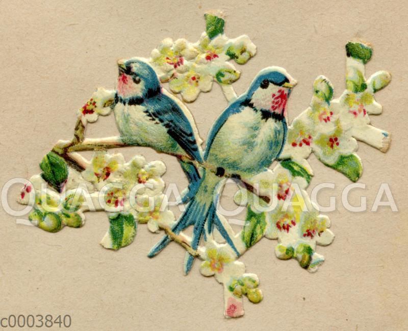 Glanzbild: Schwalben auf blühendem Zweig