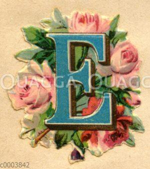 Glanzbild: Buchstabe E mit Rosen