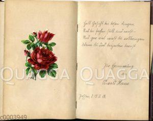 Doppelseite aus einem Poesiealbum mit aufgeklebtem Rosen-Glanzbild