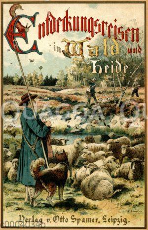 """Cover des Buches 'Entdeckungsreisen im Wald und auf der Heide"""" von Hermann Wagner"""