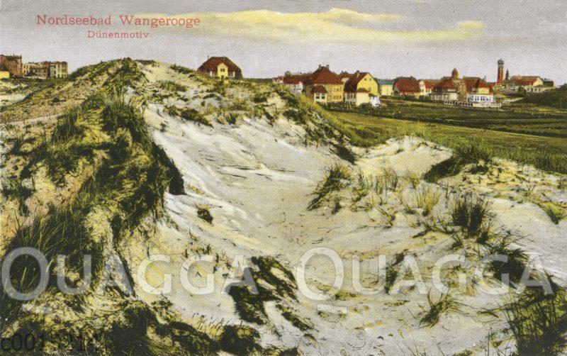 Nordseebad Wangerooge: Dünen