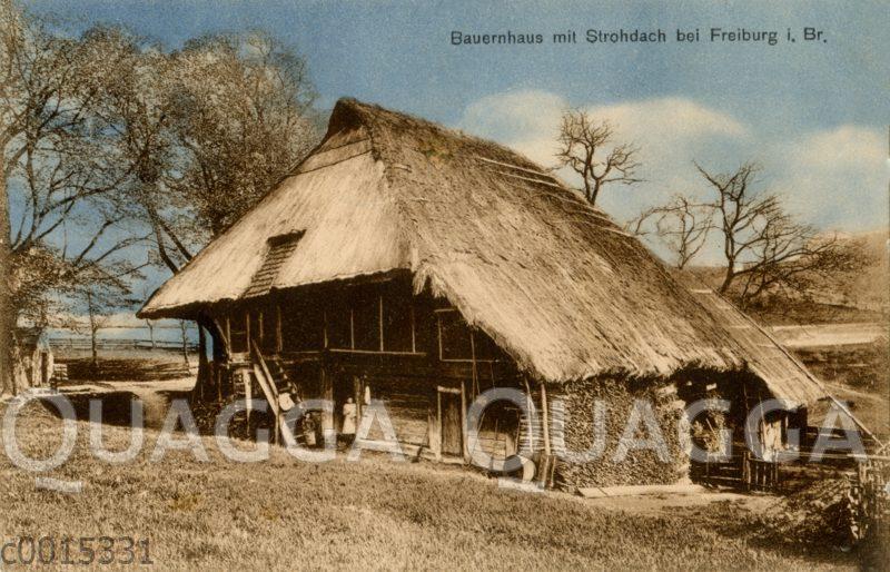 Bauernhaus mit Strohdach bei Freiburg i.Br.
