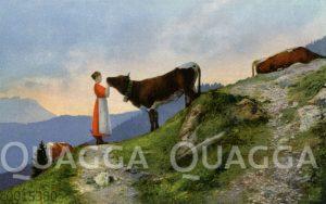 Frau mit Kuh in den Bergen