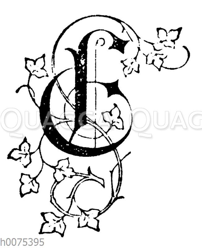 Buchstabe E mit Efeu-Dekoration