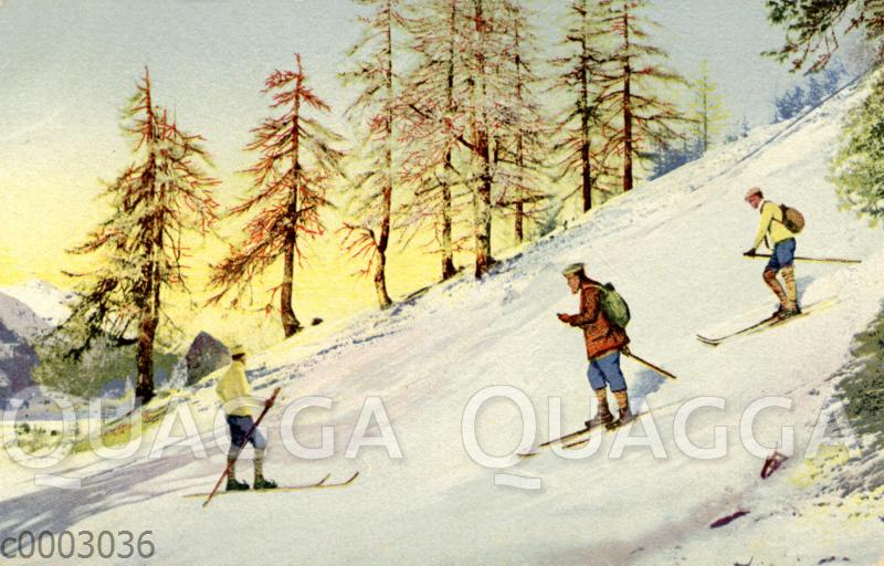 Skifahrer am Abhang