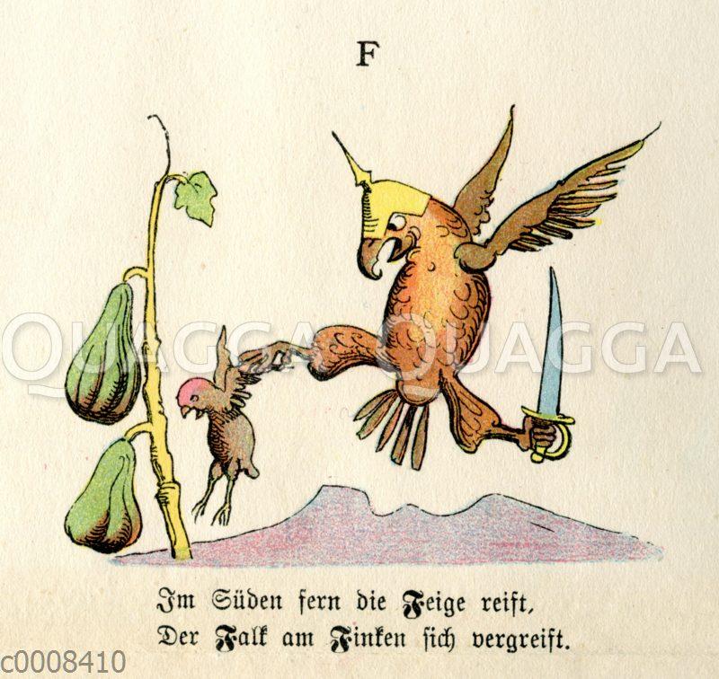 naturgeschichtliches alphabet für größere kinder und