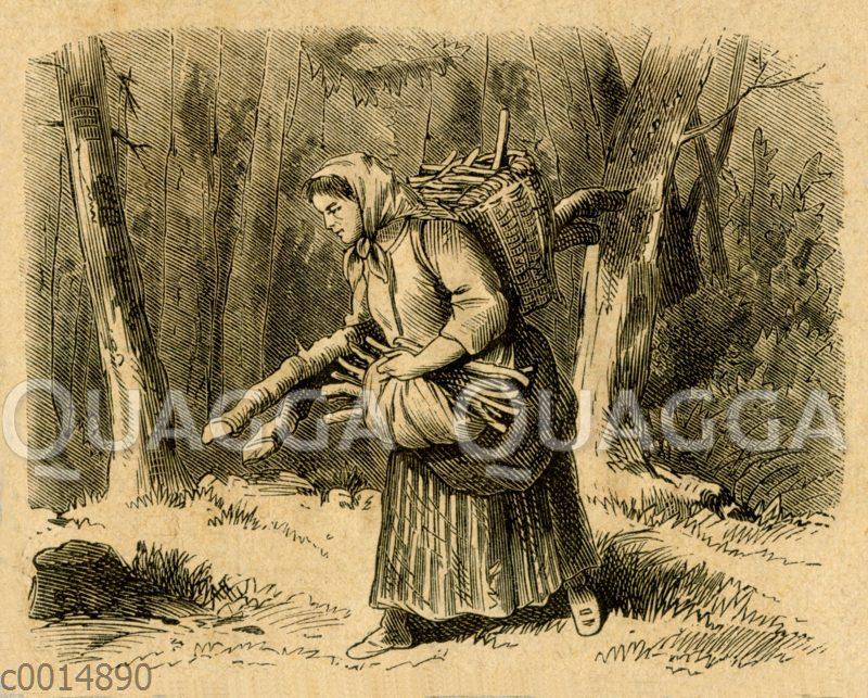 Frau beim Aufsammeln von Brennholz im Wald