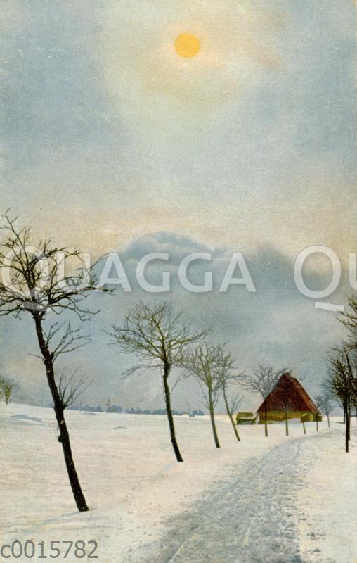 Winterlandschaft mit kahlen Bäumen