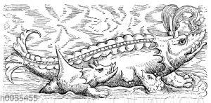 Wale nach Konrad Gesner