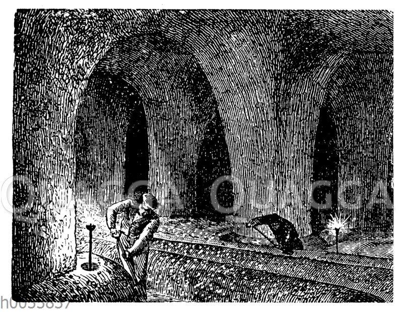 Champignon-Kultur in einem unterirdischen Gewölbe