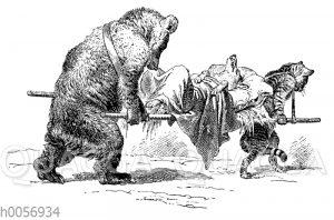 Bär und Katze schleppen maladen Fuchs