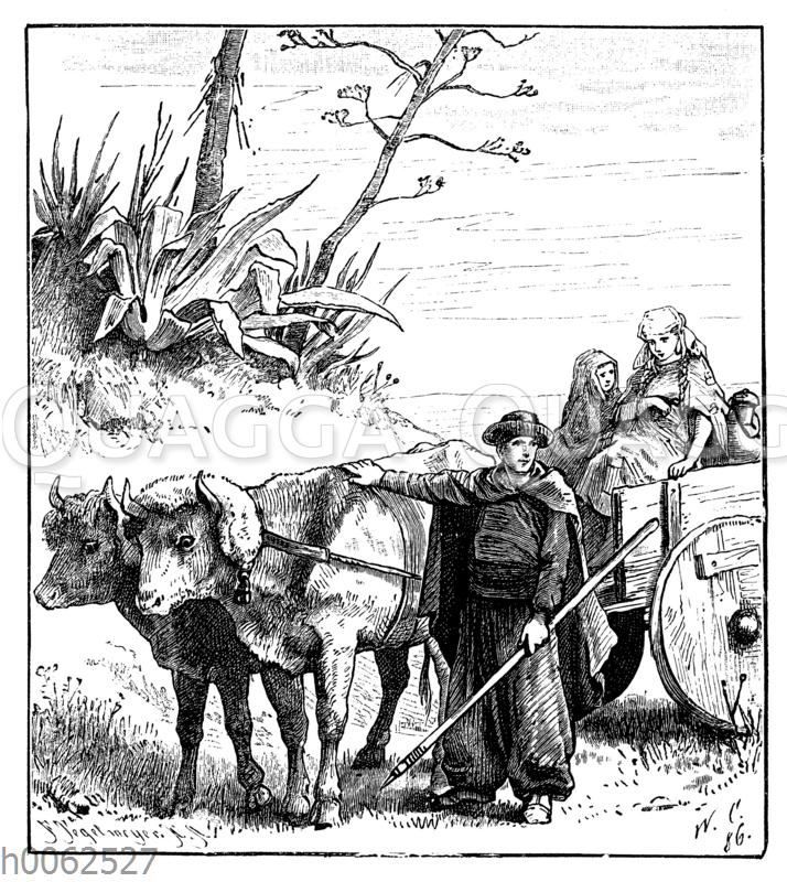 Basken mit Ochsenkarren