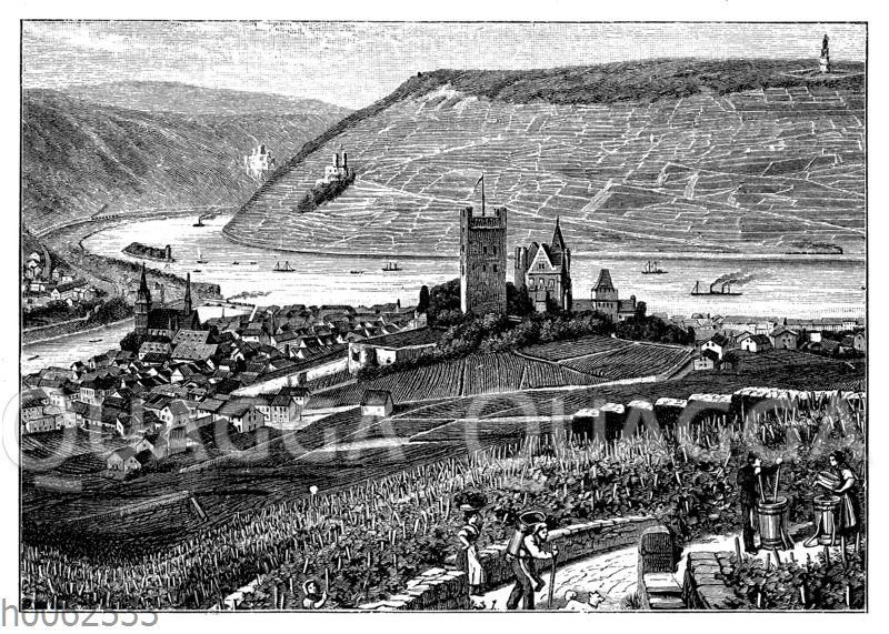 Rheintal bei Bingen