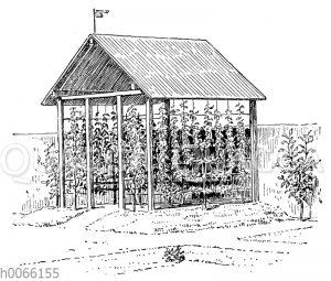 Offene Gartenlaube mit Obstspalieren