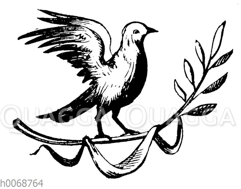 Taube mit Ölzweig