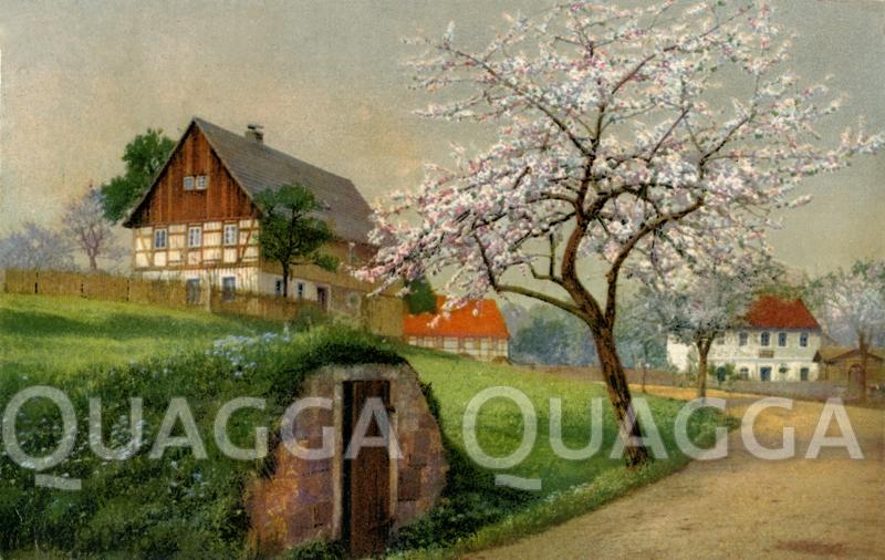 Bauernhaus im Frühling mit Erdkeller