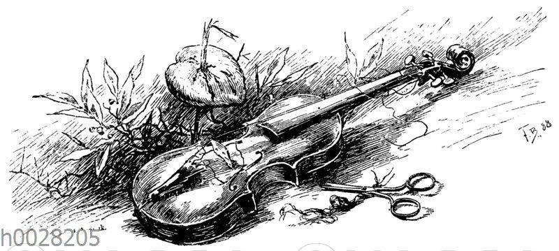 Geige mit zerschnittenen Saiten im Gras
