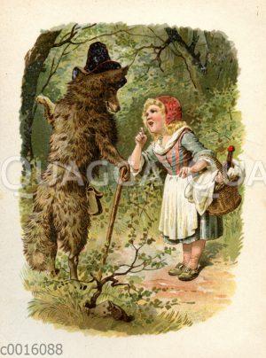 Rotkäppchen trifft den Wolf im Wald