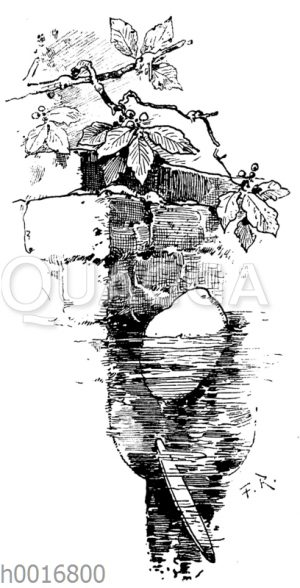 Hans im Glück: Der schwere Stein liegt im Brunnen