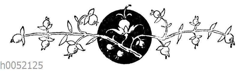 Vignette: Maiglöckchen
