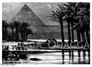 Cheops-Pyramide in Gizeh mit Palmen