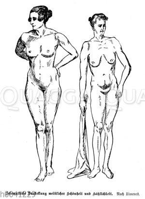 Schematische Darstellung weiblicher Schönheit und Hässlichkeit