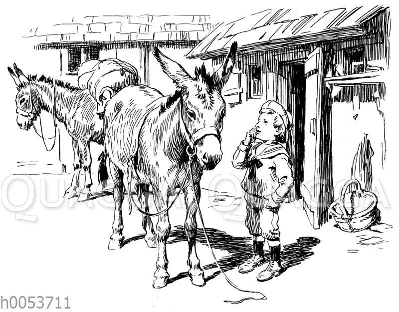 Junge im Matrosenanzug und zwei Esel
