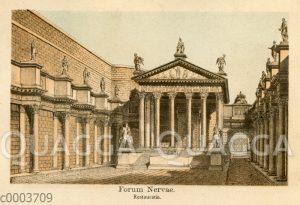 Nerva-Forum