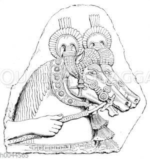 Pferdeköpfe auf assyrischen Denkmälern in Nimrud