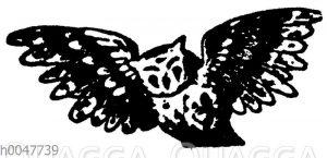 Vignette: Fliegende Eule
