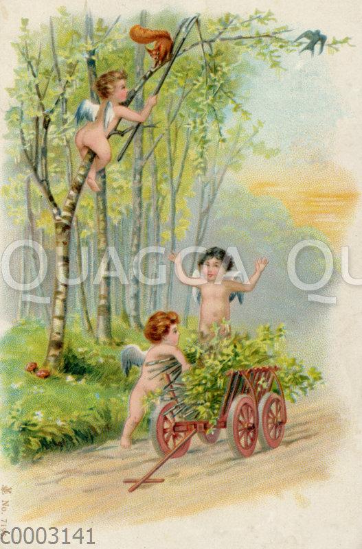 Engel sammeln frische Zweige