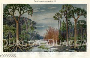 Landschaft der Steinkohlezeit