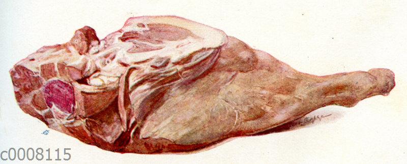 Fleisch: Kalbskeule