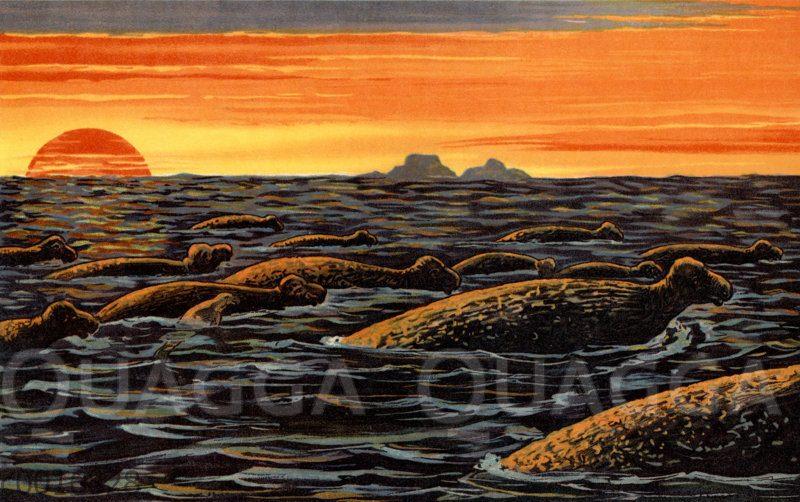 Stellersche Seekuh ausgestorben, 250. Jahrestag