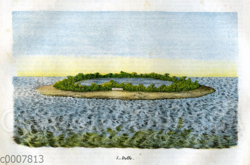 Atoll mit Palmen