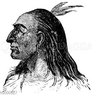 Porträt eines Indianers