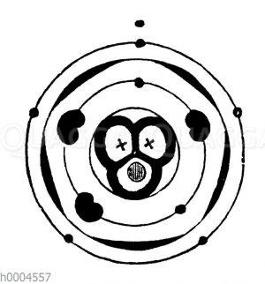 Blütendiagramm eines Baldriangewächses