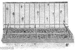 Saatbeet im Schutze eines Zaunes