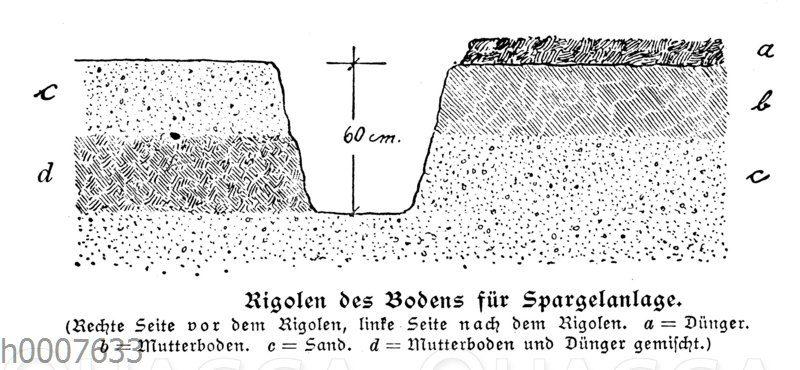 Rigolen des Bodens für eine Spargelanlage