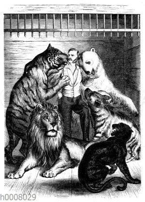 Tierbändiger Kreuzberg inmitten seiner Bestien