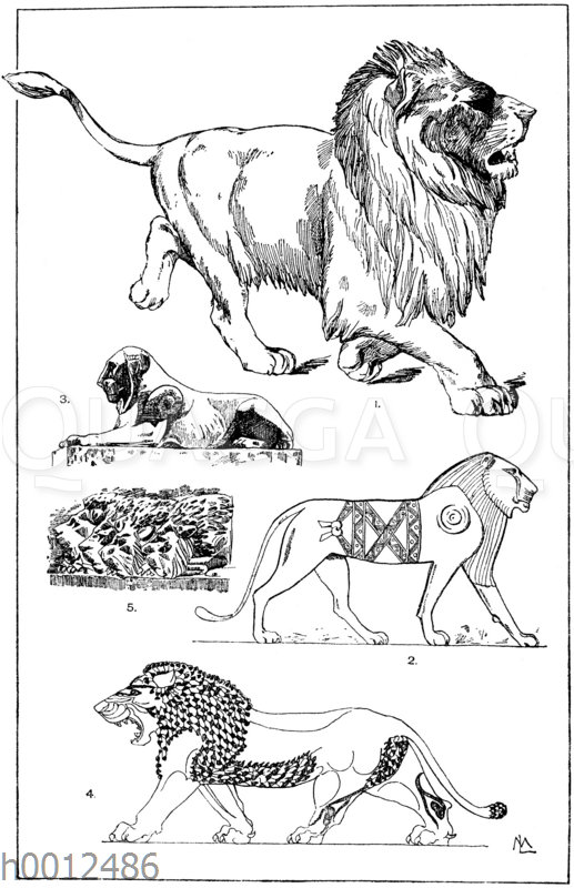 Löwenornamente