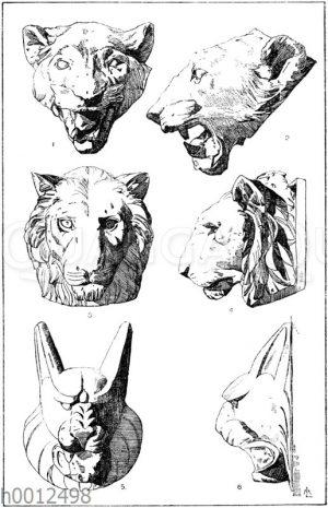 Tierköpfe