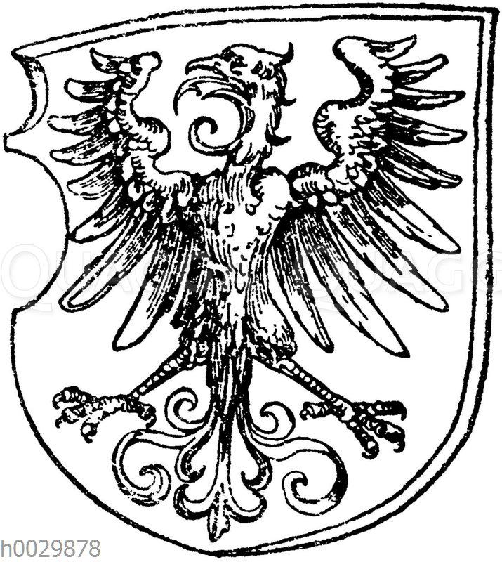 Renaissance-Adler. Nach Albrecht Dürer