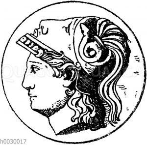 Minervakopf. Original Marmor