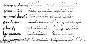 Älteste Alba-Dichtung aus dem 10. oder 11. Jahrhundert