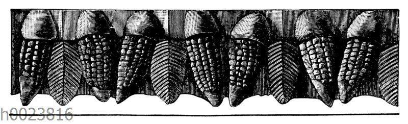 Maisornament an einer mexikanischen Vase