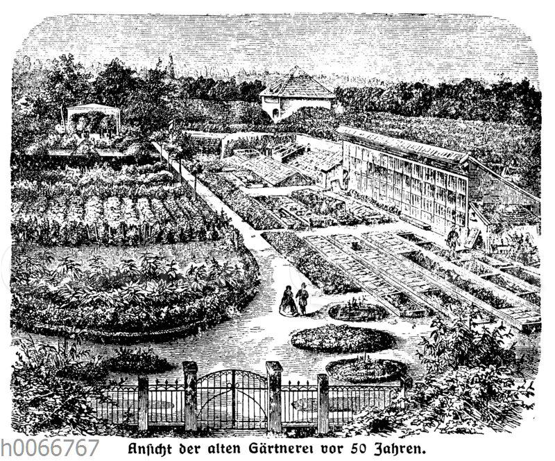 Erfurt: Ansicht der alten Gärtnerei vor 50 Jahren